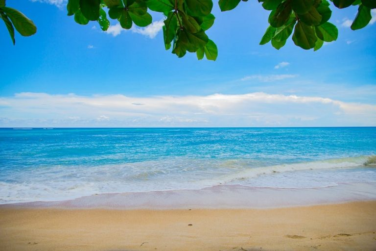 Beach Pexels