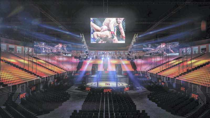 Red Hot Chili Peppers Abu Dhabi UFC 242
