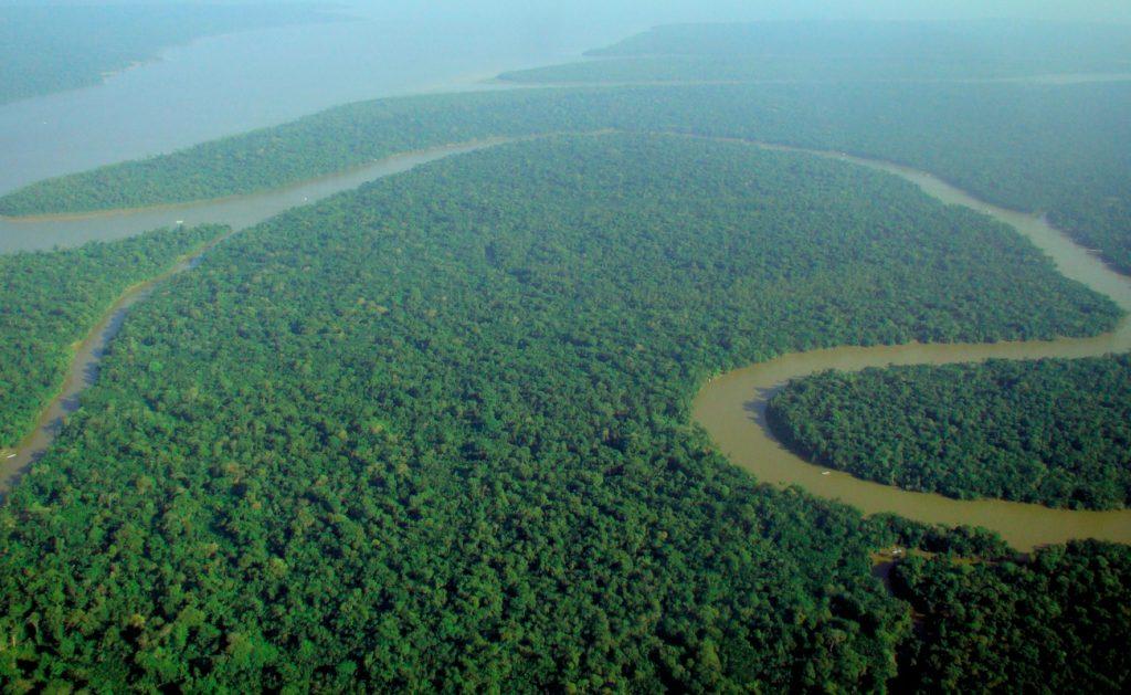 Amazon Basin recreation Expo 2020 Dubai Sheikh Mohammed