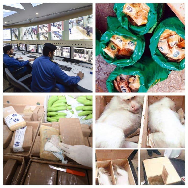 UAE Customs