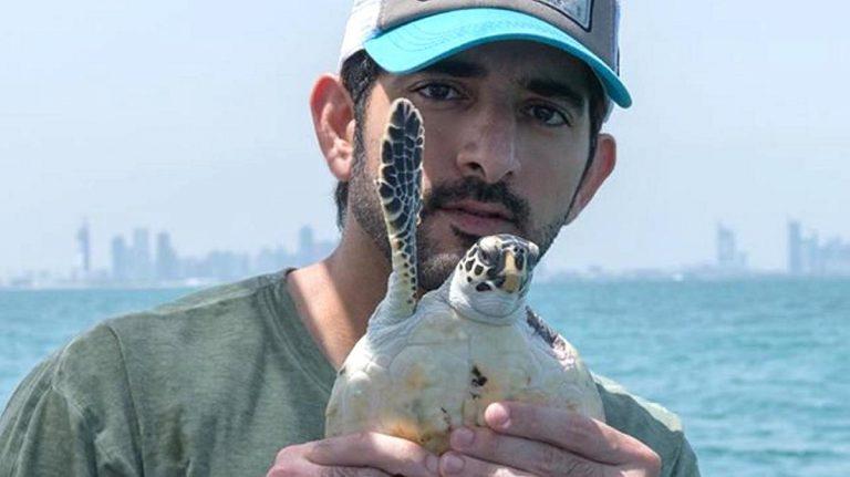 Sheikh Hamdan helps release turtles back into the wild in Dubai