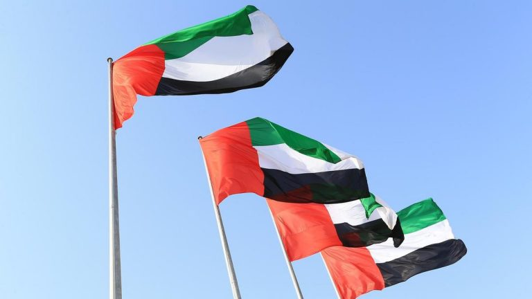 UAE looking to change laws on UAE citizenship
