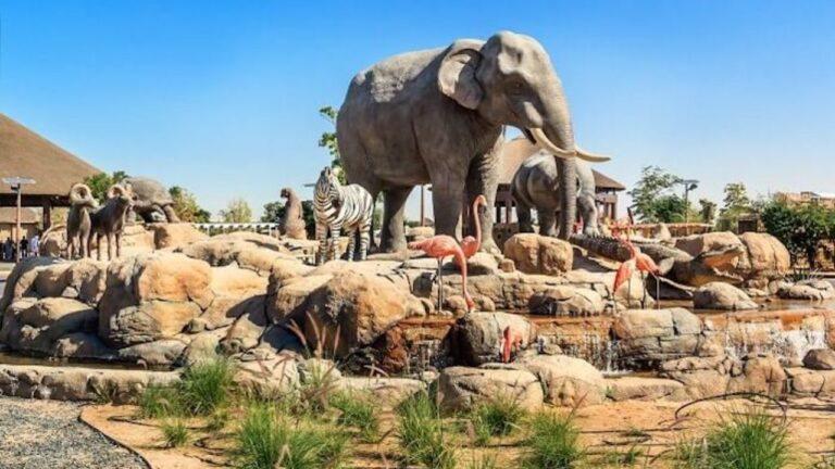 Dubai Safari Park to re-open next week