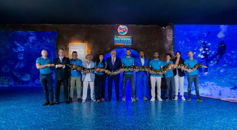 The largest snake in the world has found a new home in Abu Dhabi